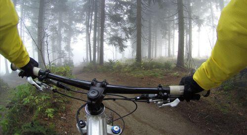 cycling handlebars woods