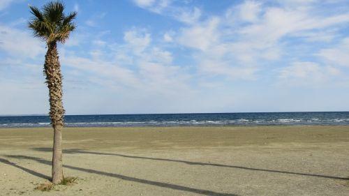 cyprus larnaca beach