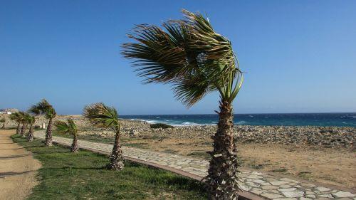 cyprus ayia napa coastal path
