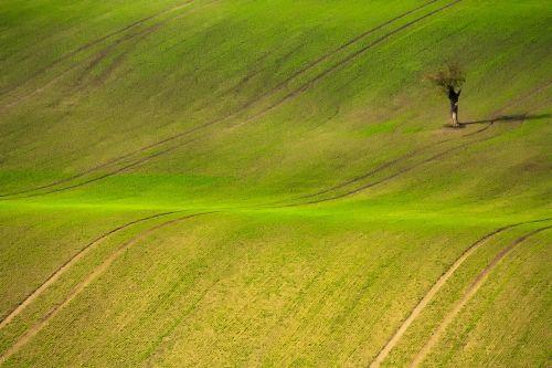 czech republic landscape field