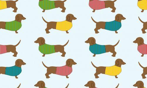 Dachshund Dog Wallpaper Background
