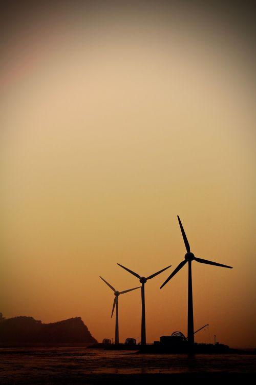 daebudo windmill glow