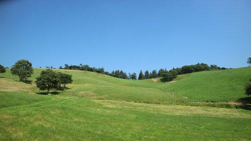 daegwallyeong  summer  ranch