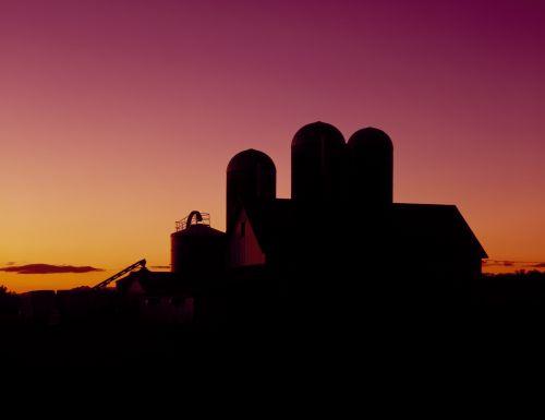 Dairy Barn At Sunset