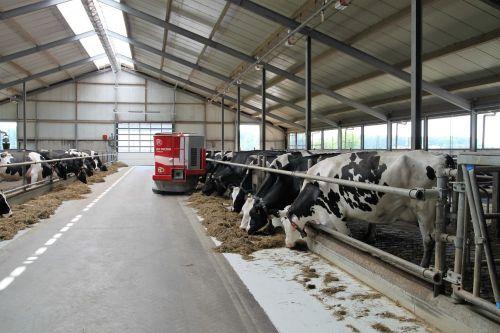 dairy farm farm robot