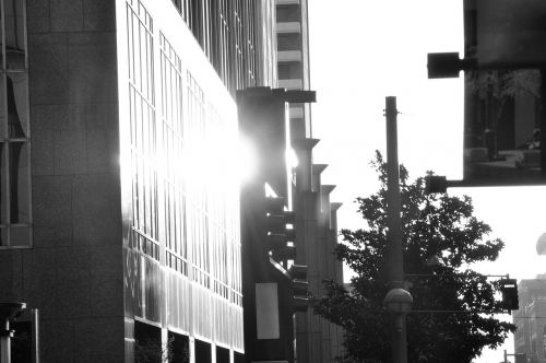 dallas downtown sunlight