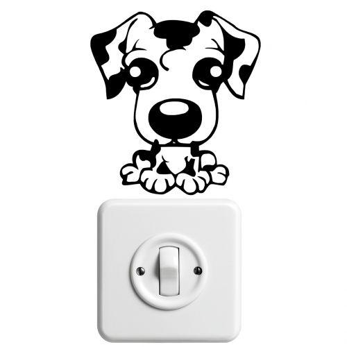 dalmatians puppy dog