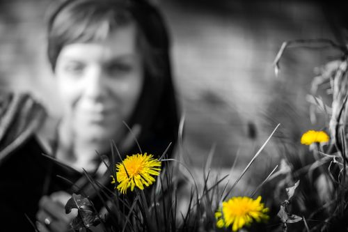 dandelion yellow woman