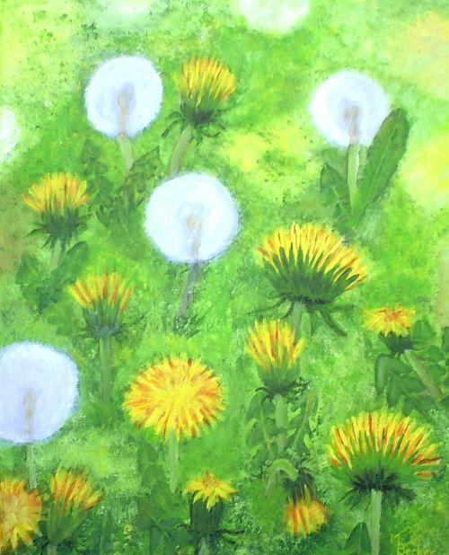 dandelion meadow flowers