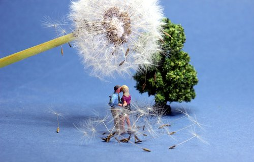 dandelion  lovers  miniature figures
