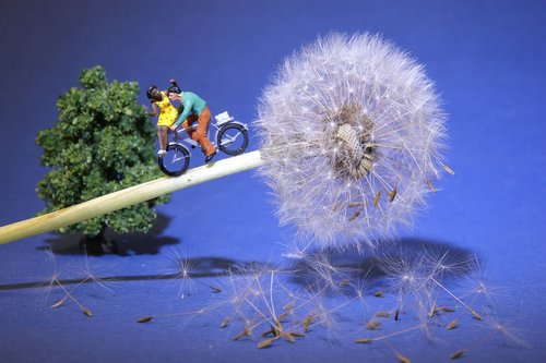 dandelion  cycling  miniature figures
