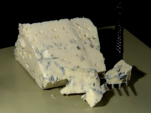 danish blue cheese blue mold mold