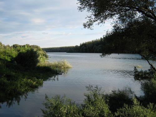 Danube,danube,upė danube,užtvankos,filialas,vanduo,atspindys,peizažas,vasara
