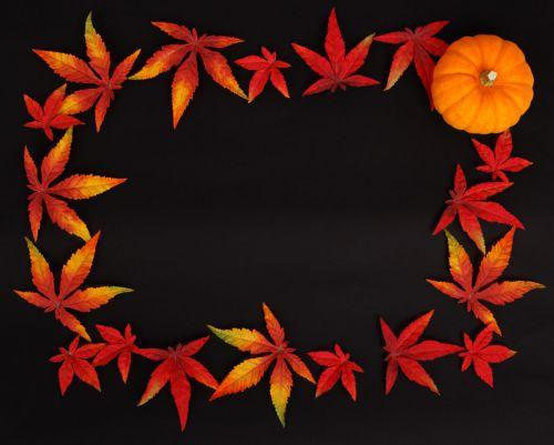 Dark Autumn Frame