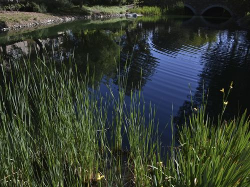 Dark Blue Lake Landscape