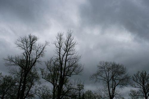 Dark Clouds Over Tsarskoe Selo