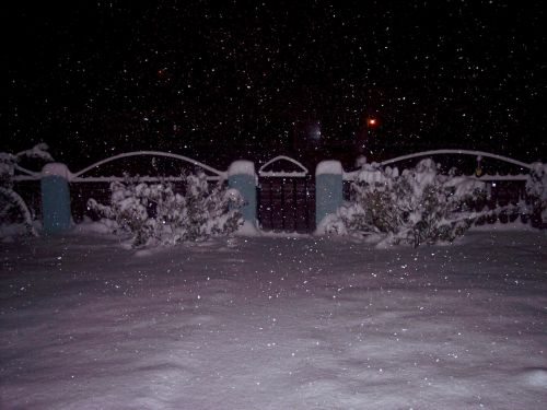 snow,night,dark,weather,colorado,westerncolorado,dark night, heavy snow