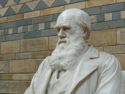 darwin natural history museum