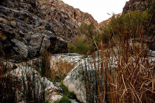 darwin falls death valley desert