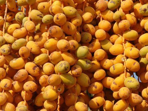 dates fruit yellow