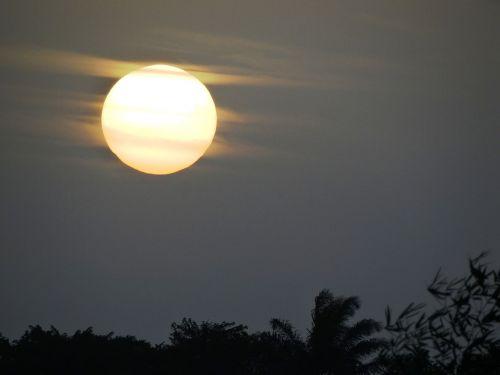 dawn amazonia sol