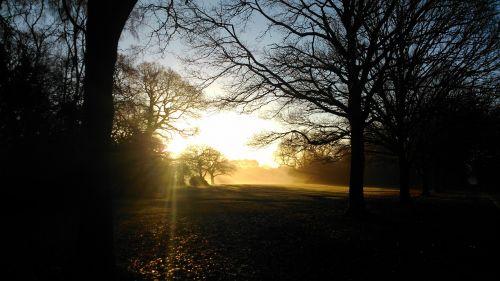 dawn autumn sunrise