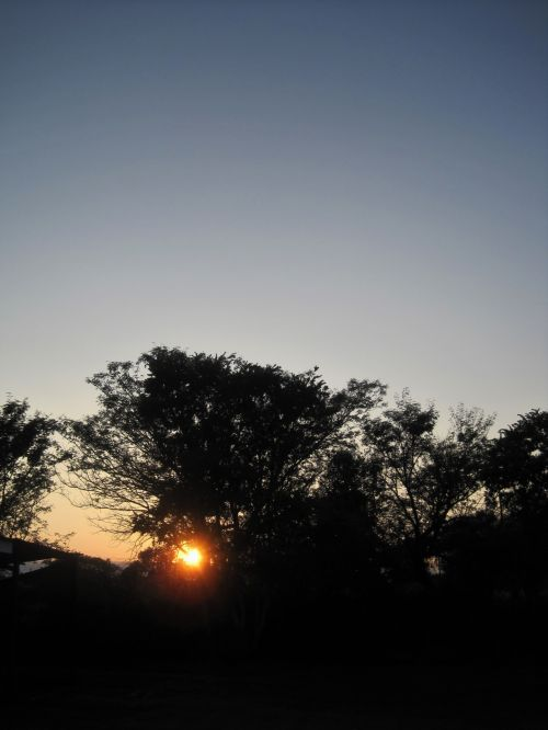 Dawn In The Morning