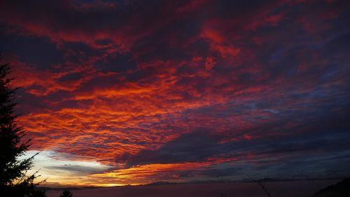 daybreak twilight morgenrot