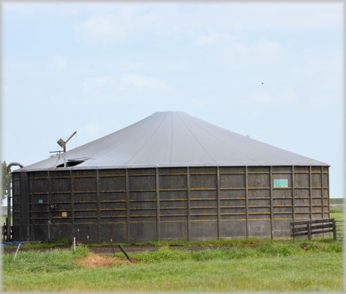 ūkis, holland, Nyderlandai, Žemdirbystė, pasėliai, gyvuliai, žemės ūkio & nbsp, įrankiai, mašinos, šienas, šienas & nbsp, ritinys, padangos, šienas & nbsp, svirnas, silosas, grūdai, kvieciai, serijos, ūkio 1 serija