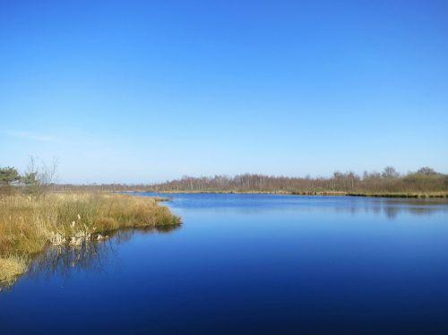 de grote peel nature reserve noord limburg