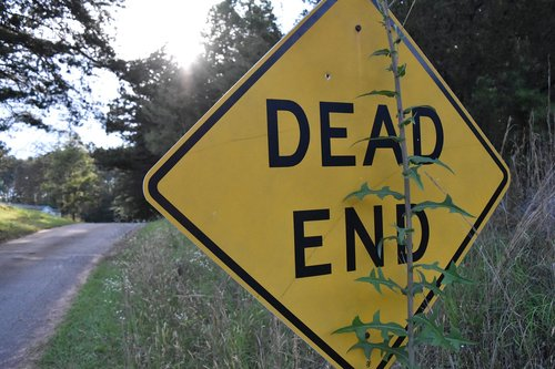 dead end  road  pines