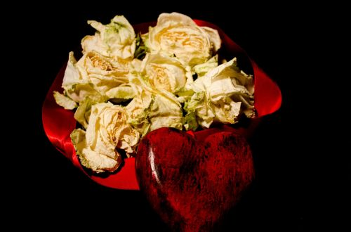 Dead Roses And Red Heart
