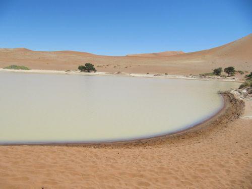 deadvlei,namib,dykuma,Sossusvlei,kraštovaizdis,smėlis,Namibija