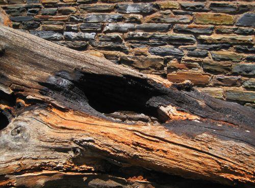 Deadwood Against Stone Wall