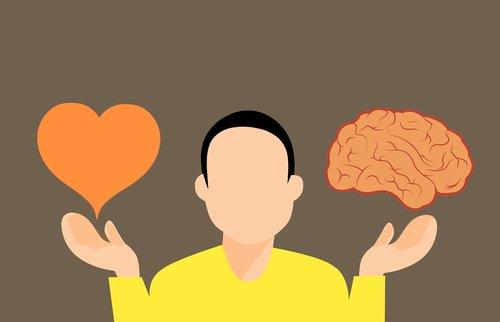 decision  brain  heart