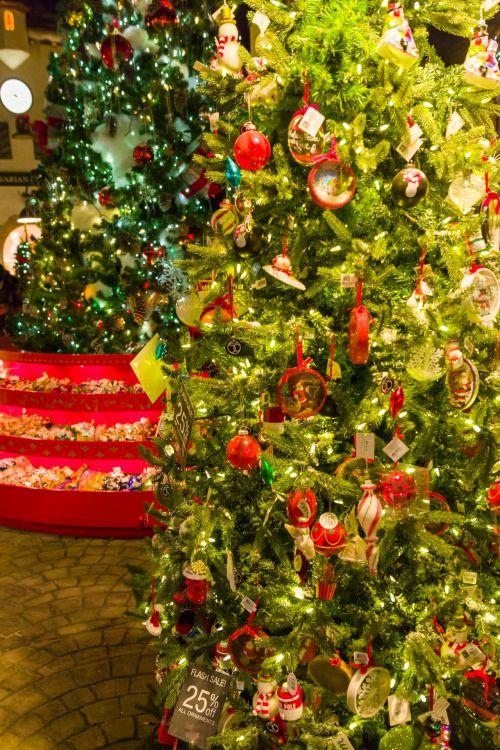 šviesus, šventė, Kalėdos, papuoštas, apdaila, šventinis, žalias, šventė, žibintai, sezoninis, blizgantis, tradicinis, medis, xmas, papuoštas Kalėdų eglutė