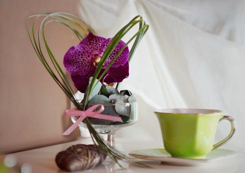 decoration orchidea cup