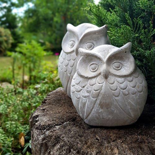 decoration  owls  owl