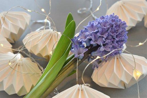 decoration  deco  table decorations