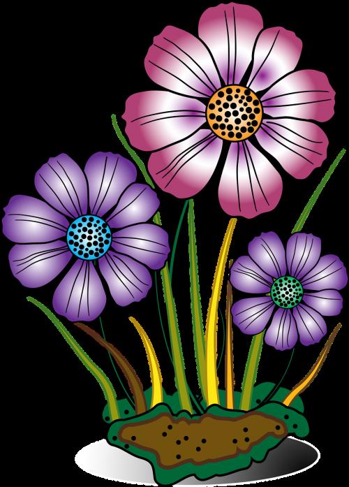 decorative flower flowers