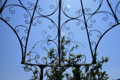 Decorative Garden Cage