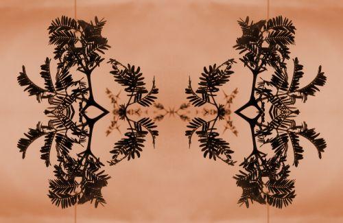 šakelės, erškėčių, lapai, meno, atspindys, dekoratyviniai erškėčių šakelės