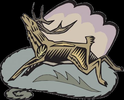 deer style wild