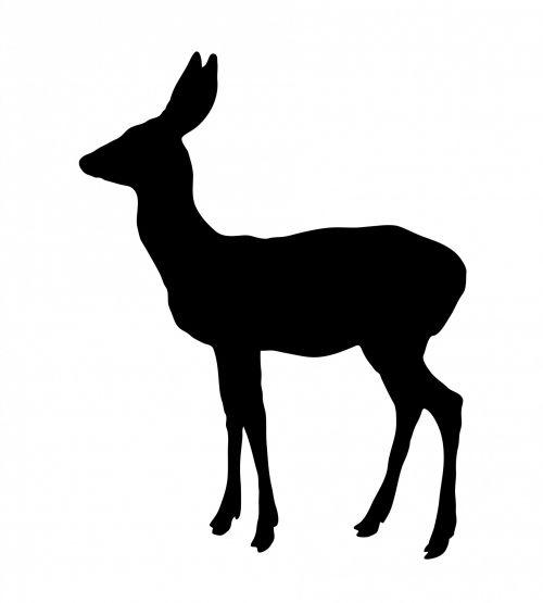 deer,doe,female,animal,wild,wildlife,black,silhouette,art,clipart,illustration,profile,isolated,white,background,free,publicdomain,deer silhouette