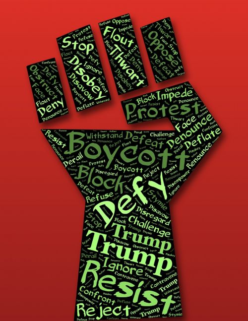 defiance fist resist
