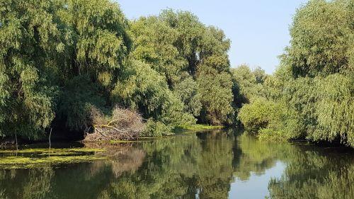 delta romania danube