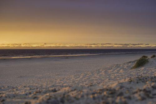 denmark jutland danish coast landscape