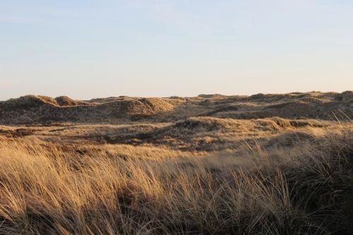 denmark holiday dunes