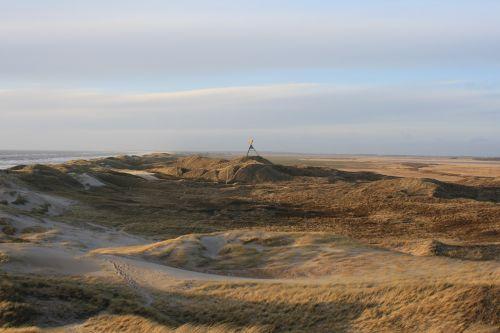 denmark north sea dune