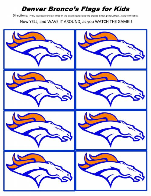 Denver Broncos Flags For Kids